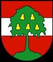 Dornbirn_Logo
